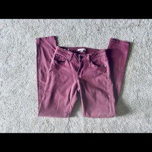 CAbi Maroon Jeans